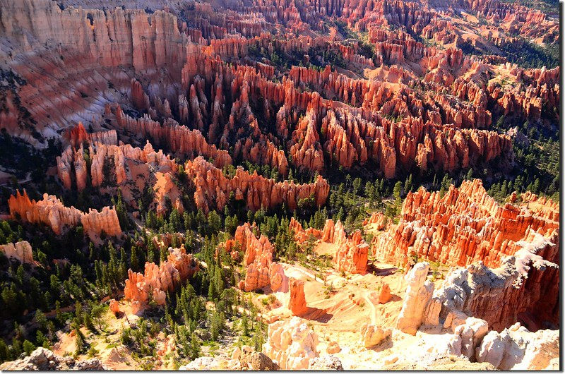 Bryce Point, Bryce Canyon (4)