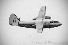 WV740 Horizon Aircraft Services Percival Pembroke C.1 RAF Scampton 201