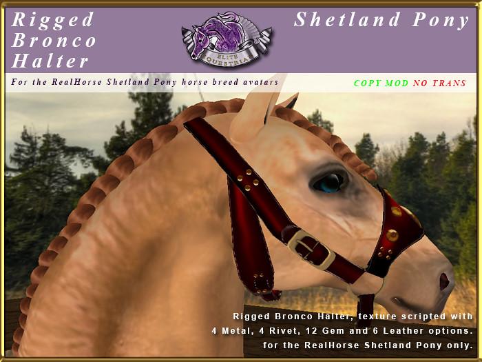 E-RH-Shetland-BroncoHalter - TeleportHub.com Live!
