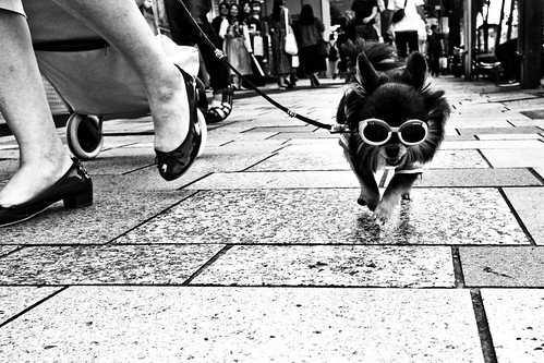 Streetwise......