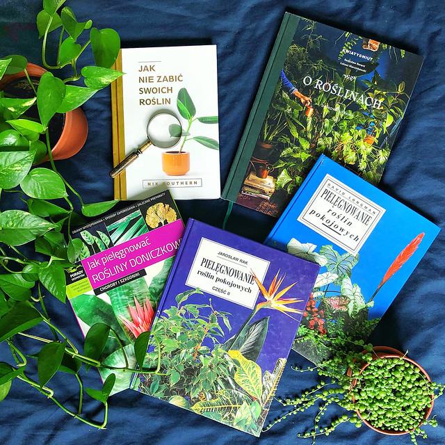 Indoor planting books