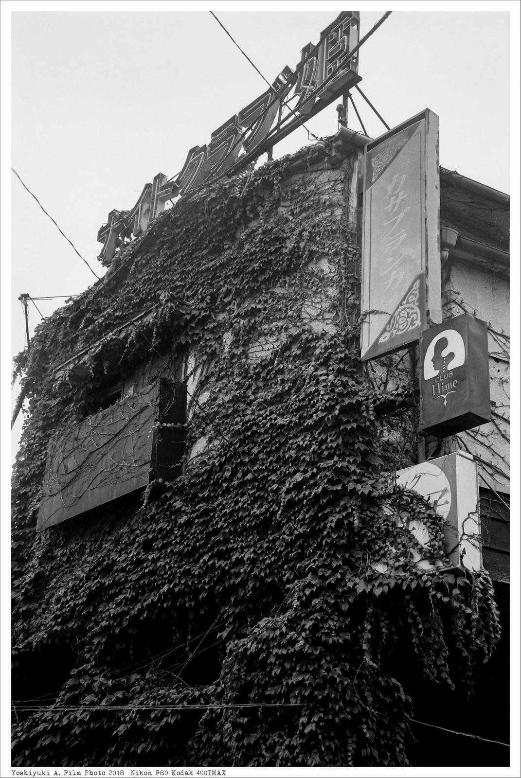 群馬県 桐生市 Nikon_F80_Kodak_400TMAX__33