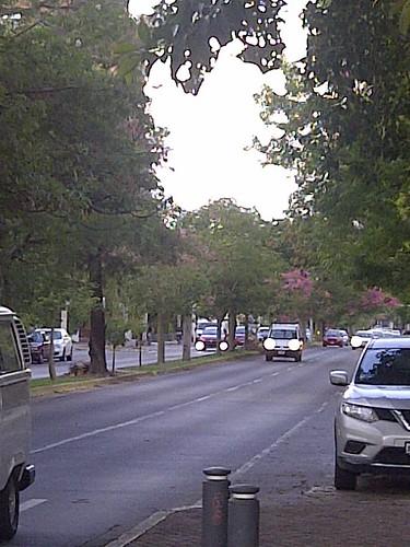 Guadalajara-20180619-07300