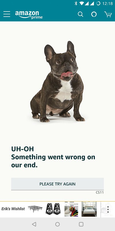 Amazon Prime Day Fail