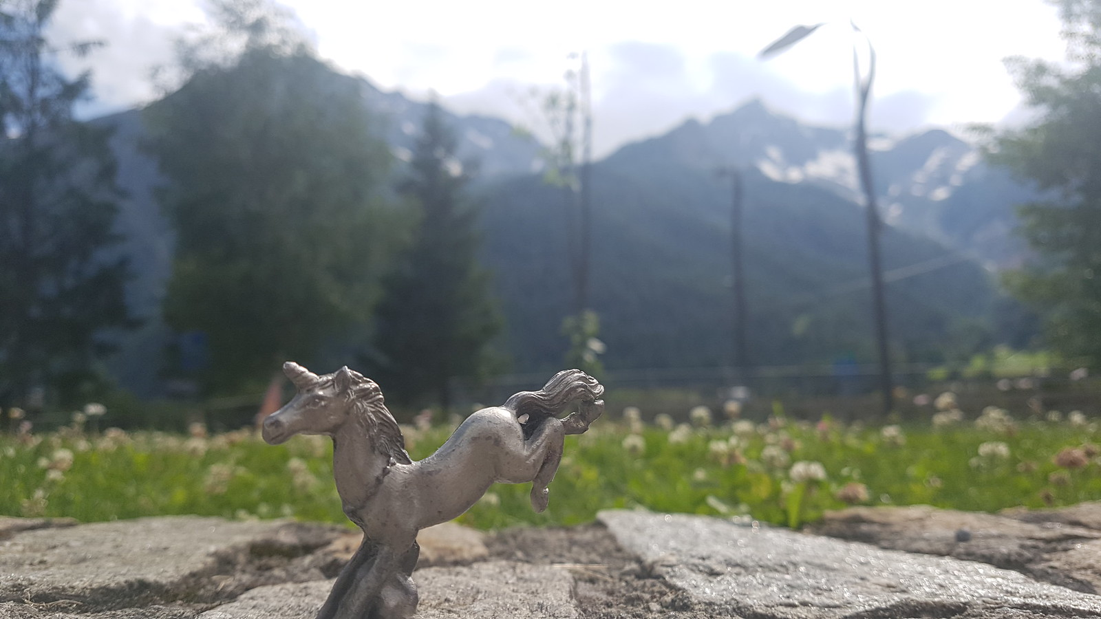 Courmayeur Unicorn