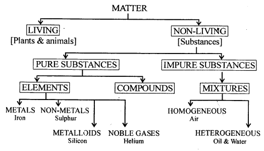 New Simplified Chemistry Class 8 ICSE Solutions - Elements ...