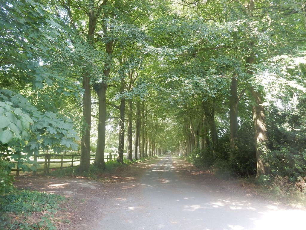 Avenue Wendover Circular via Lee Common