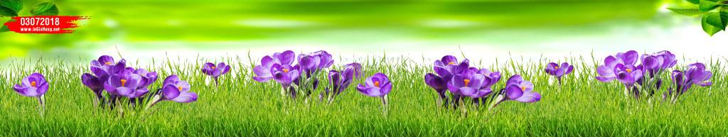 Mẫu kính óp bếp in những bông hoa cỏ 03072018@KinhOpBep0418