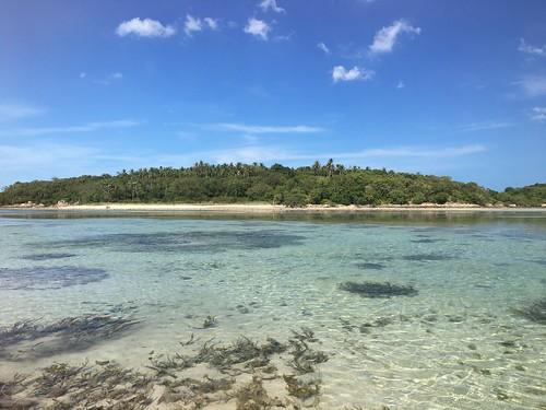 サムイ島 6月30日マトラン島釣り遠征最終章-海洋生態保護の法令実施