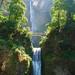 Multnomah Falls by Lucy (嘉莉)