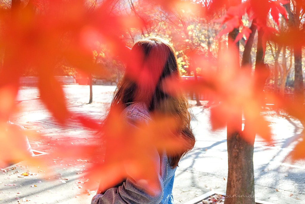 autumn_seoul_korea_back_shot