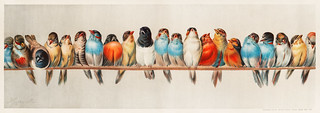 A Perch of Birds (1880) by Hector Giacomelli (1822-1904). Digitally enhanced from our own original plate. | by Free Public Domain Illustrations by rawpixel