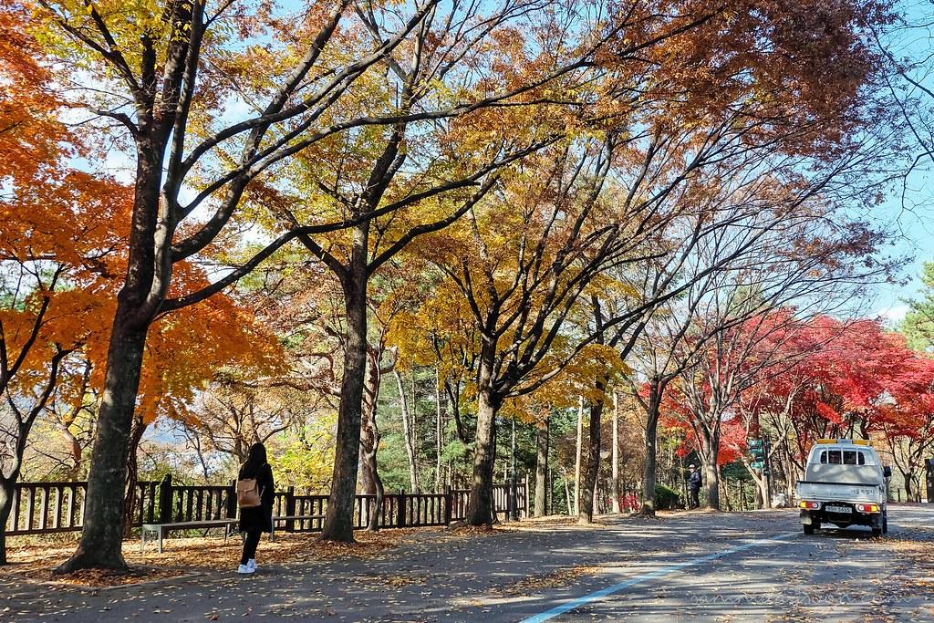 seoul_grand_park_walk
