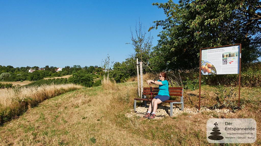 Obstgemeinschaftsanlage an der Hiwweltour Zornheimer Berg