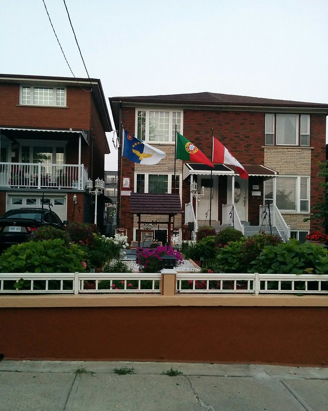 Front garden, 117 Caledonia Road #toronto #caledoniafairbank #caledoniaroad #gardens #flags #azores #portugal #canada