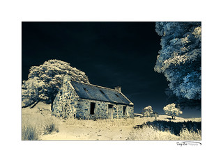 Tornichelt_8488 (Split Toned Infrared)