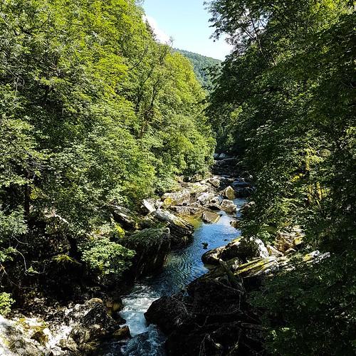 Doubs(16) 20180707_115936