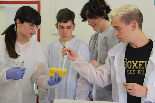 Biomaking Summer School con la Fondazione Golinelli