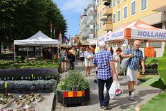 Matmarknad i Uddevalla