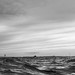 Down by the Sea, Southend in Black & White