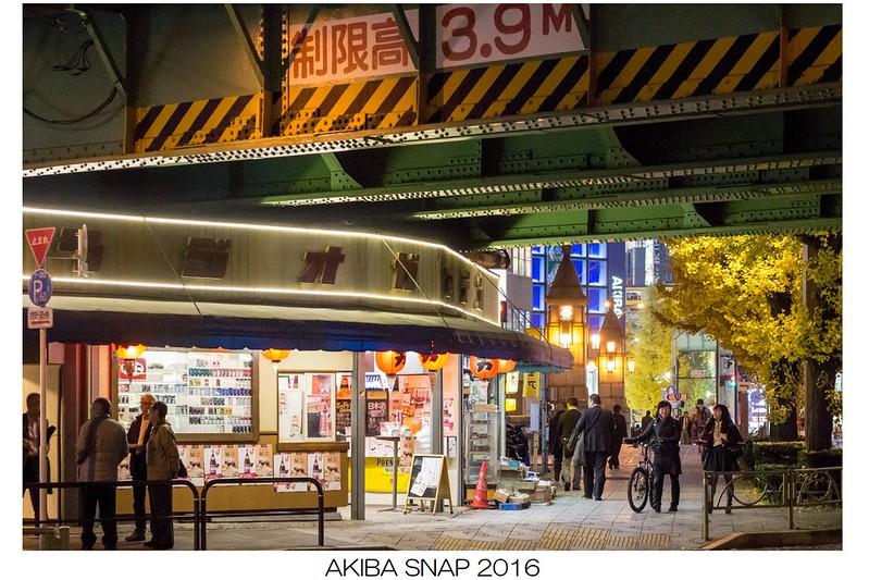 c94既刊『AKIBA・SNAP 2016』