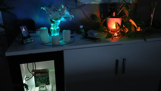 LED Kerzen im Saal blinzeln im Dunkel WZ-02009