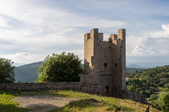 9858 Château Saint-Bernard (Hyères) - Photo of Hyères