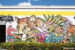 Orlando, FL Murals 2018