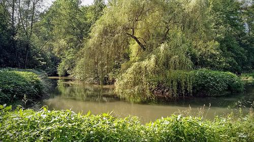 Le Schiffwasser (3)