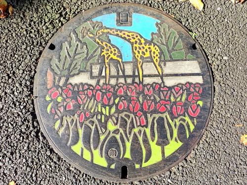 Hamura Tokyo, manhole cover 3 (東京都羽村市のマンホール3)