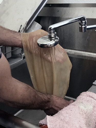 Washing the SCOBY