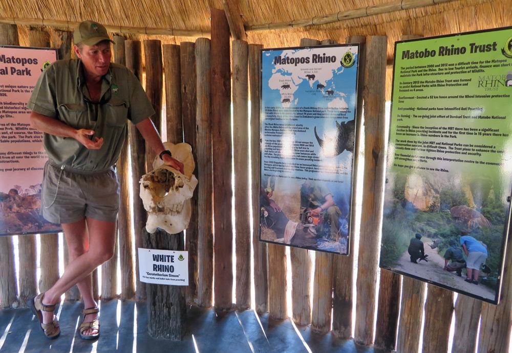 ian-harmer-africa-rhino-guide