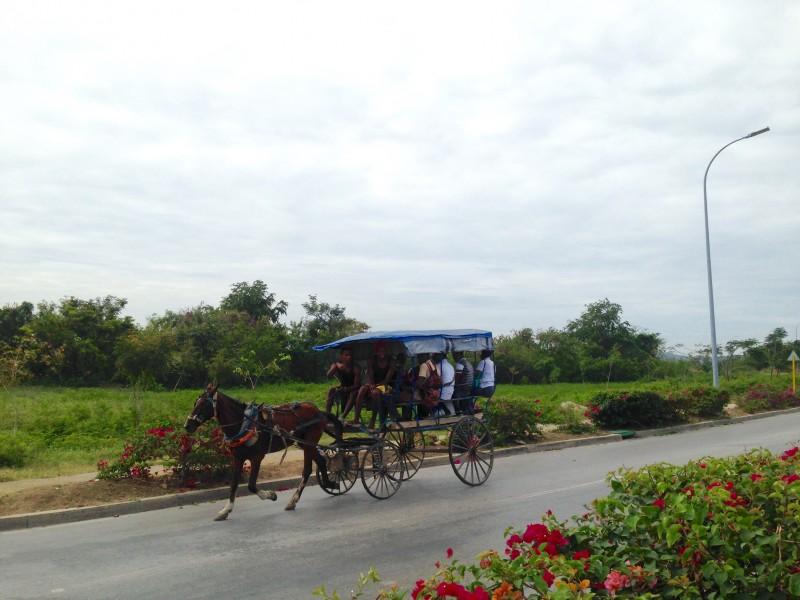 Horse-drawn carriage in Cuba