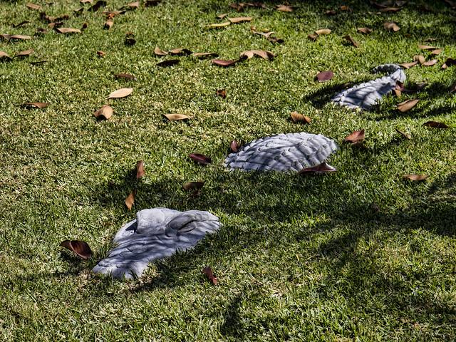Alligator yard art