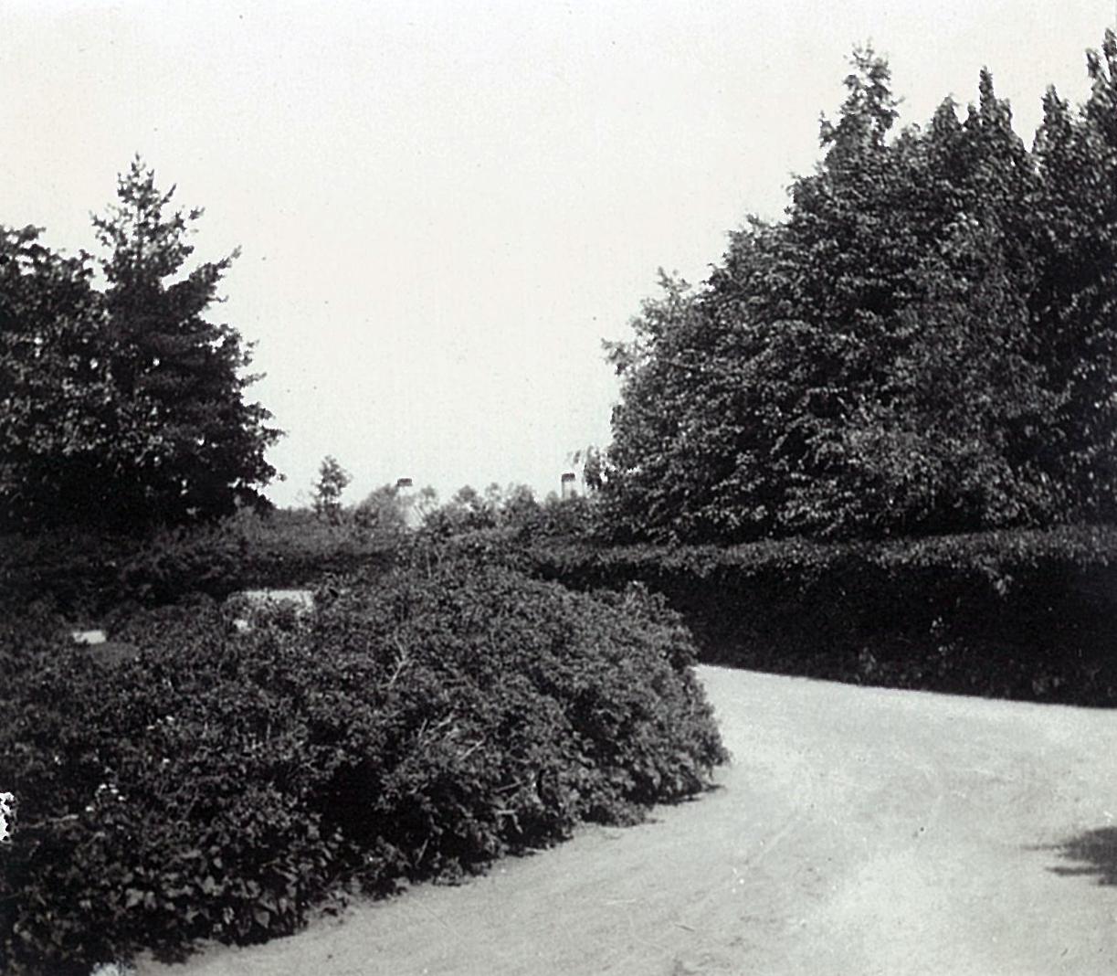 Дорожка в парке в Рябово