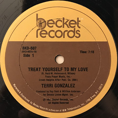 TERRI GONZALEZ:TREAT YOURSELF TO MY LOVE(LABEL SIDE-A)