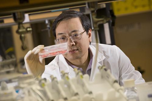 Dr. Lin Liu