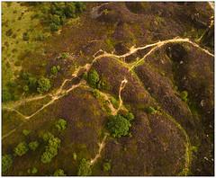 Norland Moor 350 feet