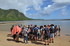 Learning about ancient Hawaiian aquaculture at Huilua Fishpond