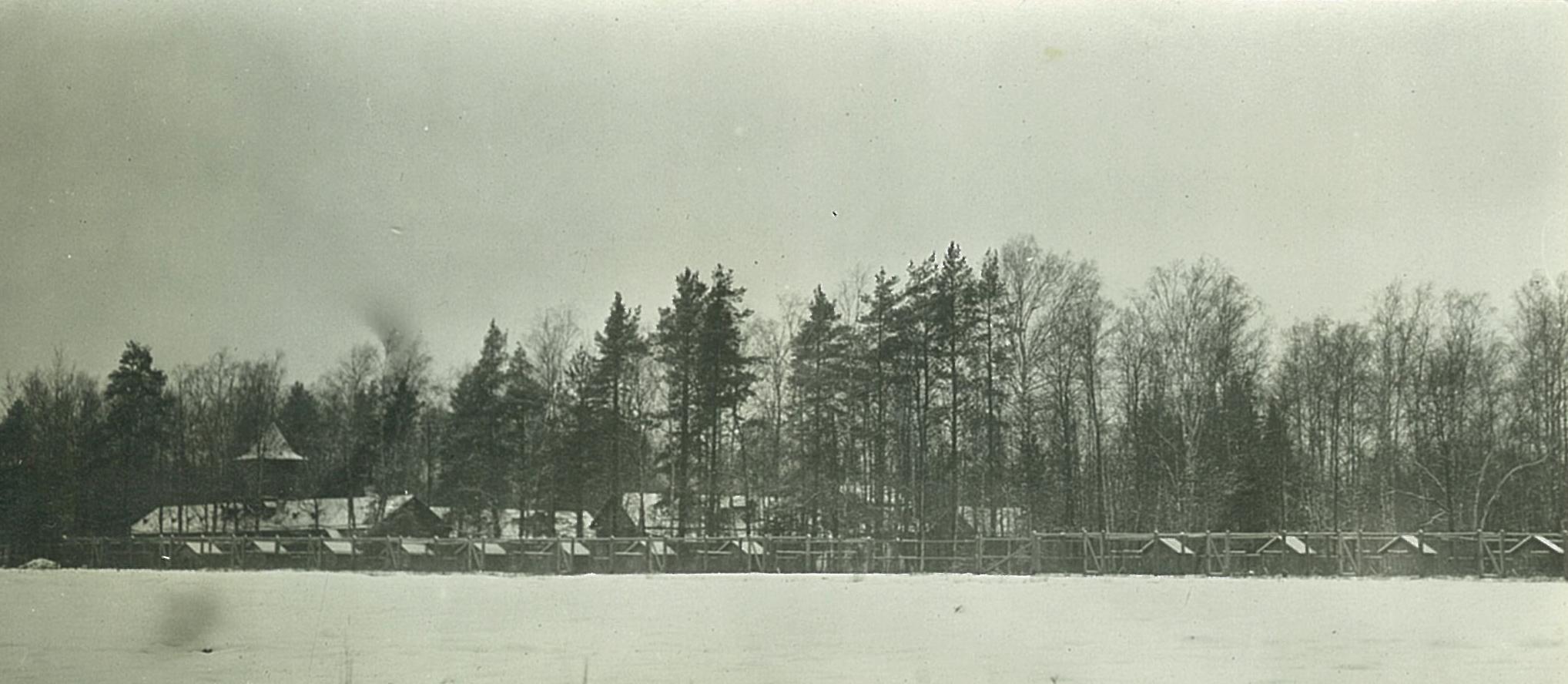 Деревянные хозяйственные постройки в Рябово