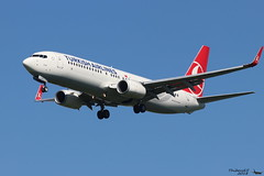 Boeing 737 -8F2 TURKISH AIRLINES TC-JHZ 42004 Mulhouse juin 2018