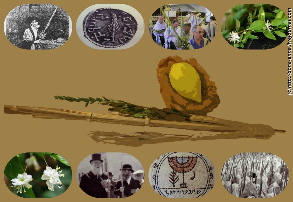 Sukkot-collage-a