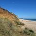 IMG_7243 - Hengistbury Head - Dorset - 05.08.18