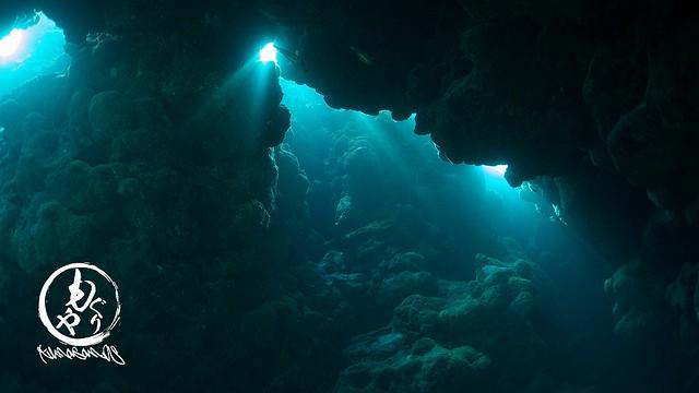 洞窟に差し込む光は美しい。