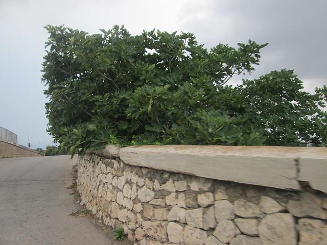 ponte-via-giovanni-XXIII