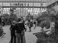 Heather and Annie in the Temperate House