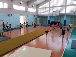 Collegiale ginnastica artistica (3)