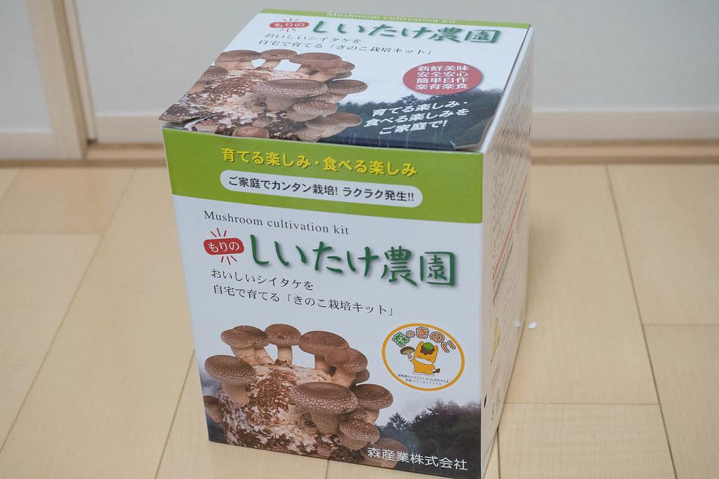 シイタケ-5