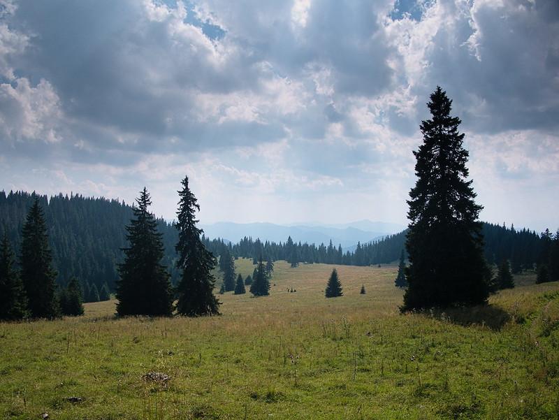 Góry Choczańskie: Wielki Chocz psem