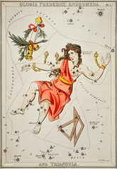 Sidney Hall's (1831) astronomical chart illustration of Gloria Frederici, Andromeda. Original from Library of Congress. Digitally enhanced by rawpixel.